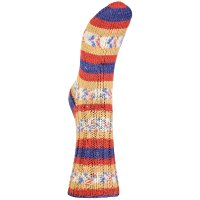 Järbo Soft Raggi 4-fach 100g Fb.209 blue-red print